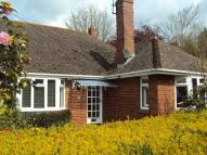Detached property to rent in St Leonards, Exeter