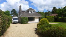 5 bedroom Chalet in FERNDOWN