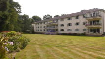 3 bed Flat in FERNDOWN