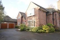 Detached house to rent in Hale Road, Hale...