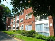 1 bed Apartment in Churchfield...