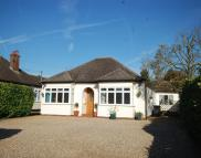 4 bed Detached Bungalow for sale in Chelmsford Road...