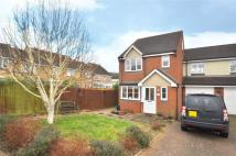Orient Close Link Detached House to rent