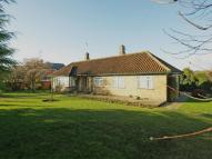 Detached Bungalow for sale in The Cedar Tree...