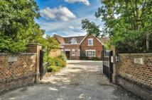 6 bed Detached house in Manor House...