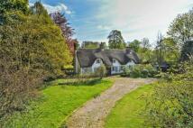 Cottage for sale in Hormead Cottage...