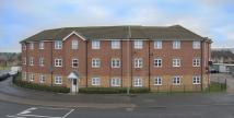Ground Flat to rent in Exmouth Court, Corby...