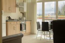 Ecclesall Heights Studio flat to rent