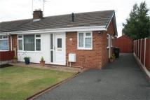 Semi-Detached Bungalow to rent in Halkyn View...