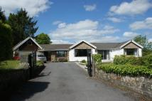Detached Bungalow for sale in Hafod y Coed Pentre-Cwrt...