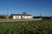 3 bed Detached Bungalow for sale in Awel y Bryn, Horeb...