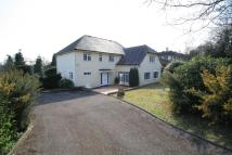 4 bedroom Detached home in Croydon