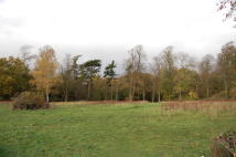 Land in Odell Road, Sharnbrook for sale