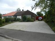 2 bed Semi-Detached Bungalow in Cedar Road, Canvey Island