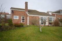 Bungalow for sale in Maeshendre, Waun Fawr...