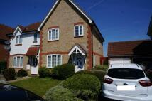 3 bedroom semi detached property to rent in Heathfield Park Drive...