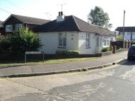 2 bed Detached Bungalow to rent in Plumberow Ave, Hockley...
