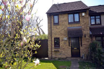 Wood Green semi detached property to rent