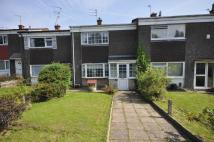Terraced house to rent in Berwick Close...