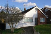 Edgehill Gardens Detached Bungalow for sale