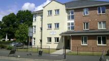 2 bed Apartment in New William Close...