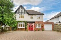 home for sale in Compton Avenue, Luton...