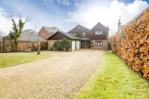 home in Village Road, Bromham...