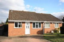 Bungalow in Wisteria Drive, Bordon