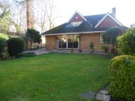 Detached home in Halkingcroft, Slough
