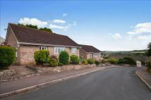 Detached Bungalow for sale in Gatehouse Close, Dawlish