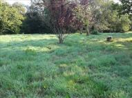 Fluder Hill Land