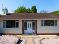 Detached Bungalow for sale in Cary Road, Paignton
