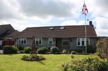 5 bedroom Detached Bungalow for sale in Bancombe Road, Somerton