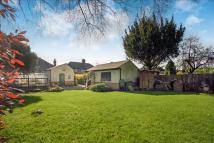 2 bed Detached Bungalow for sale in Leicester Road, Enderby...
