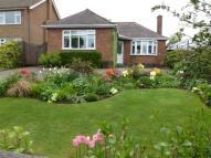 Detached Bungalow in Duport Road, Burbage...