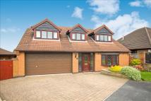 Detached home for sale in Ashburton Close, Burbage...