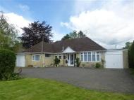 2 bed Detached Bungalow in Penny Street...