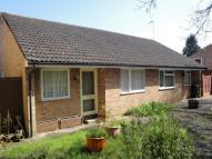 2 bed Semi-Detached Bungalow in Badger Way, Verwood