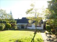 Detached Bungalow for sale in Broadmead, Hitchin