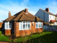 3 bedroom Detached Bungalow in Luton Road, Dunstable