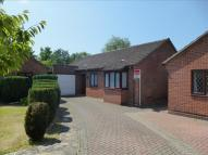 Detached Bungalow for sale in Abigail Close, Luton