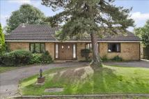 Durler Gardens Detached Bungalow for sale