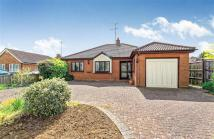 Detached Bungalow in Wistow Road, Luton