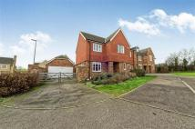 4 bedroom Detached house in Peacock Road, Bromham...