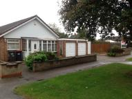 Detached Bungalow for sale in Chiltern Avenue, Bedford