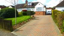 3 bed semi detached property for sale in Golden Riddy...