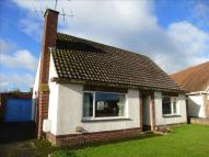 Detached Bungalow for sale in Ridgmount, Durrington...