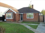 Detached Bungalow for sale in Dugard Avenue, COLCHESTER