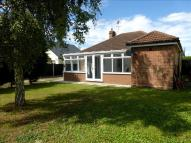 Detached Bungalow in Dugard Avenue, Colchester