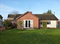 3 bed Detached Bungalow in Church Road, Clehonger...